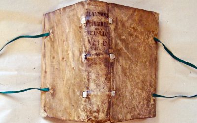 Book conservation and repair: vellum-bound books